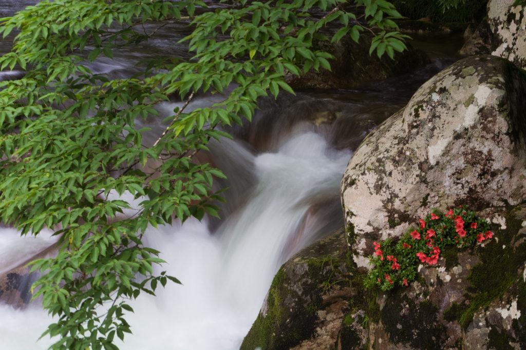 【関越道観光掘り下げ隊!】関越道のICから行ける滝の世界と楽しみ方